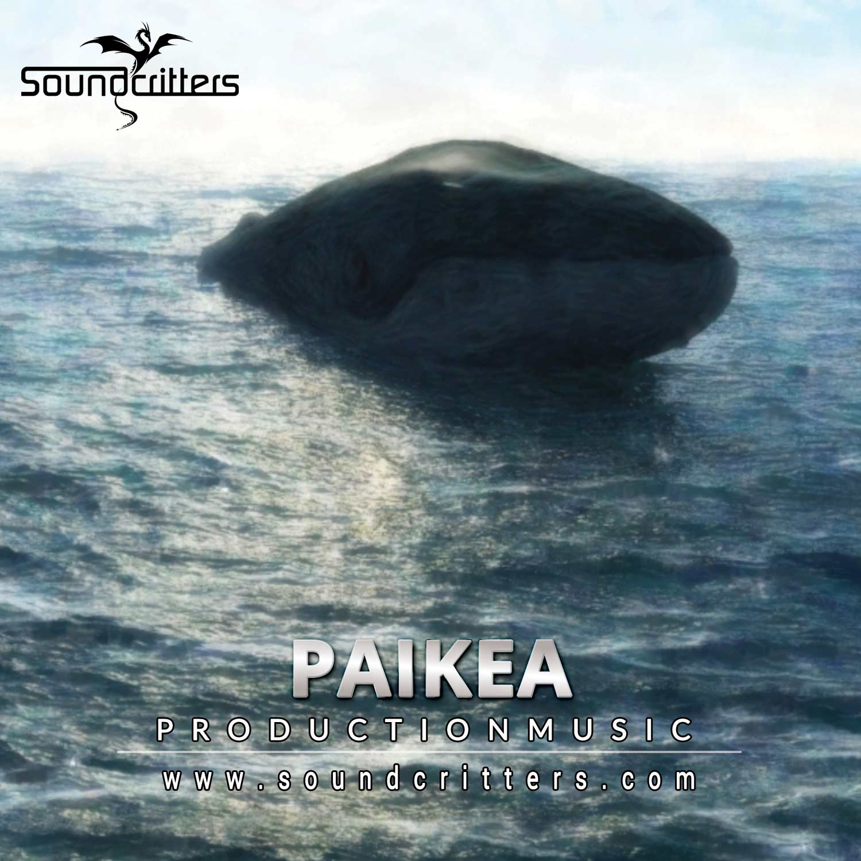 Haka Music
